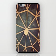 Spindly iPhone & iPod Skin