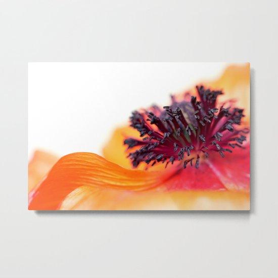 Eruption of colors... (I) Metal Print