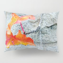 Red Leaves Growing by the Wall. Autumn, Fall Pillow Sham