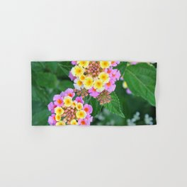 Southern blossoms Hand & Bath Towel