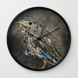 Fresh From The Nest Wall Clock