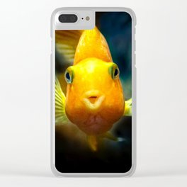 Funny goldgish Clear iPhone Case