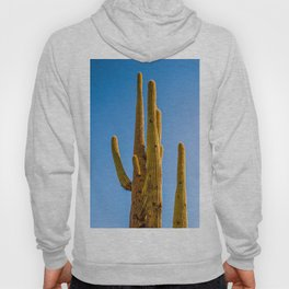 Minimalist Green Cactus Blue Sky Mexican Desert Landscape Hoody