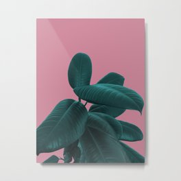 Ficus Elastica #11 #WildRose #decor #art #society6 Metal Print