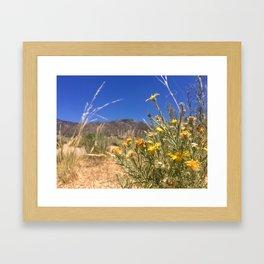 Yellow Wildflowers Framed Art Print