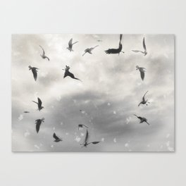 Fly Birds Fly Canvas Print