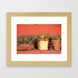 Cacti Framed Art Print