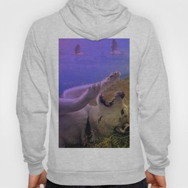 Siberian Husky Digit. Edition Hoody