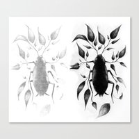 bugs Canvas Prints featuring bugs by David Cristobal