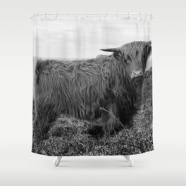 Highland cow II Shower Curtain