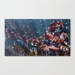 Symbiota Canvas Print