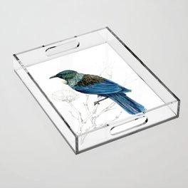 Tui, New Zealand native bird Acrylic Tray