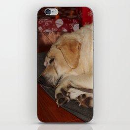 A Christmas Nap iPhone Skin