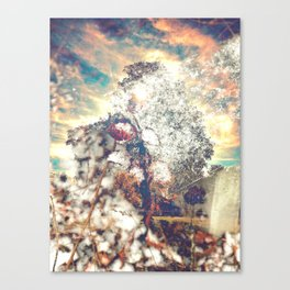 Snow, Sunshine and Sky Canvas Print