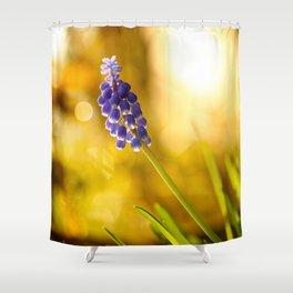 Beautiful Spring Muscari Bokeh background  #decor #society6 #homedecor Shower Curtain