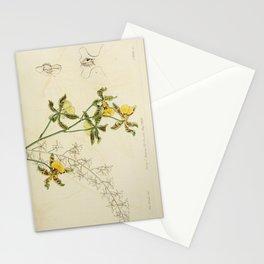 Flower 1851 oncidium altissimum Tallest Oncidium 220 Stationery Cards