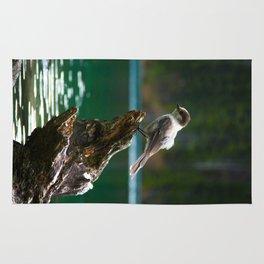 Grey Jay at Joffre Lakes Rug
