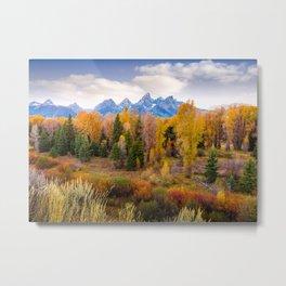 Autumn Glow at Grand Teton National Park Metal Print