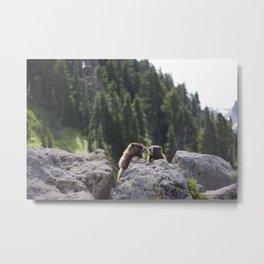 Marmot Love Metal Print