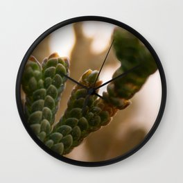 Resurrection moss Wall Clock
