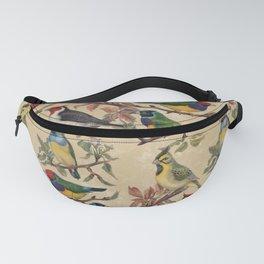 Vintage Birds Fanny Pack