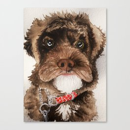 Fluffy Doggo Canvas Print