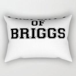 Property of BRIGGS Rectangular Pillow