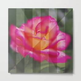 Rose Flower From A New Angle Metal Print