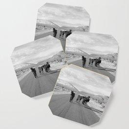 Spring Mountain Wild Horses Coaster