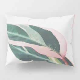Pink Leaves II Pillow Sham