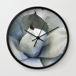 Agave in Blue Wall Clock