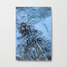Nature in the French Alps 4 Metal Print