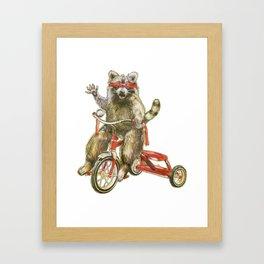 Raccoon Trike Joy Ride Framed Art Print