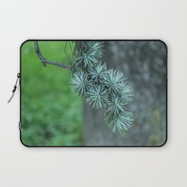 Conifer tree Laptop Sleeve