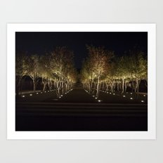 Trees By The Kimbell Art Print