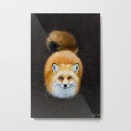 Patient Fox Metal Print