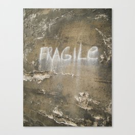 Fragile city Canvas Print