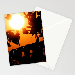Squint Stationery Cards
