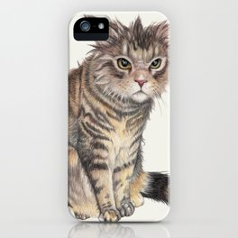 Messy Cat iPhone Case