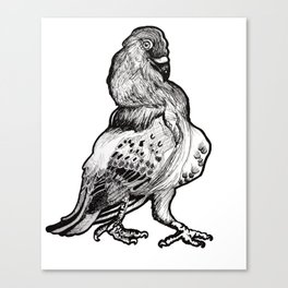 Trash Bird Canvas Print