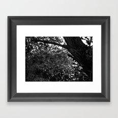 Rock Rings  Framed Art Print