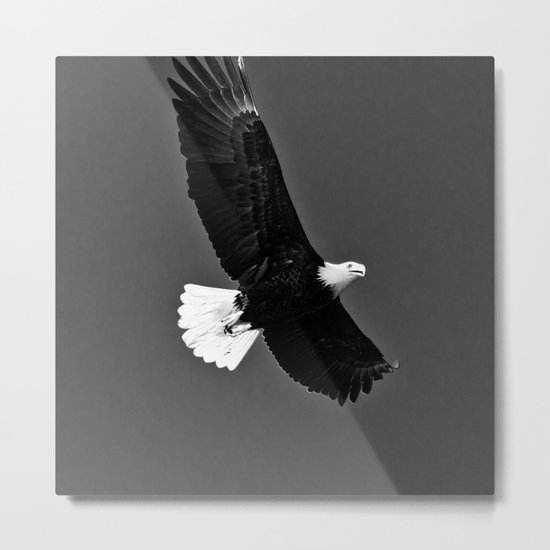 Freedom Eagle (black) Metal Print