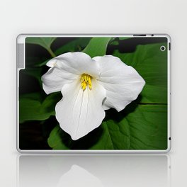 Trillium in the spotlight Laptop & iPad Skin