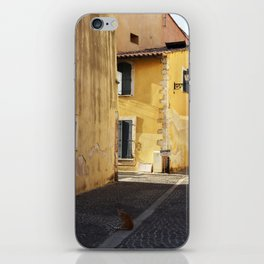 The little cat in the street of Martigues France iPhone Skin
