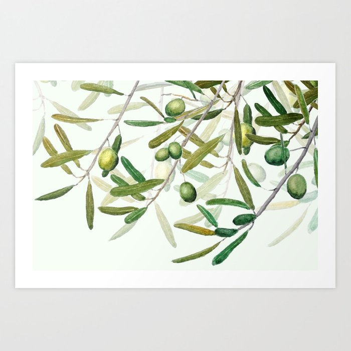 Green Olive watercolor painting Art Print