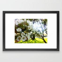Spring Flower Tree Framed Art Print