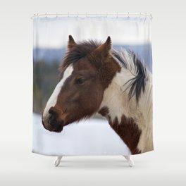 Tri-Colored Horse Shower Curtain