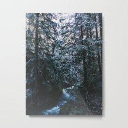 PNW Winter Metal Print