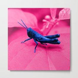 blue grasshopper Metal Print