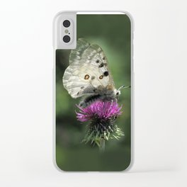 Butterfly on Thistle Flower Clear iPhone Case